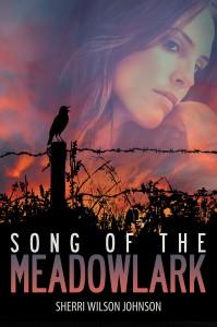 meadowlark-high-res
