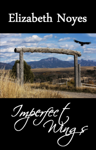 Imperfect Wings cover concept5